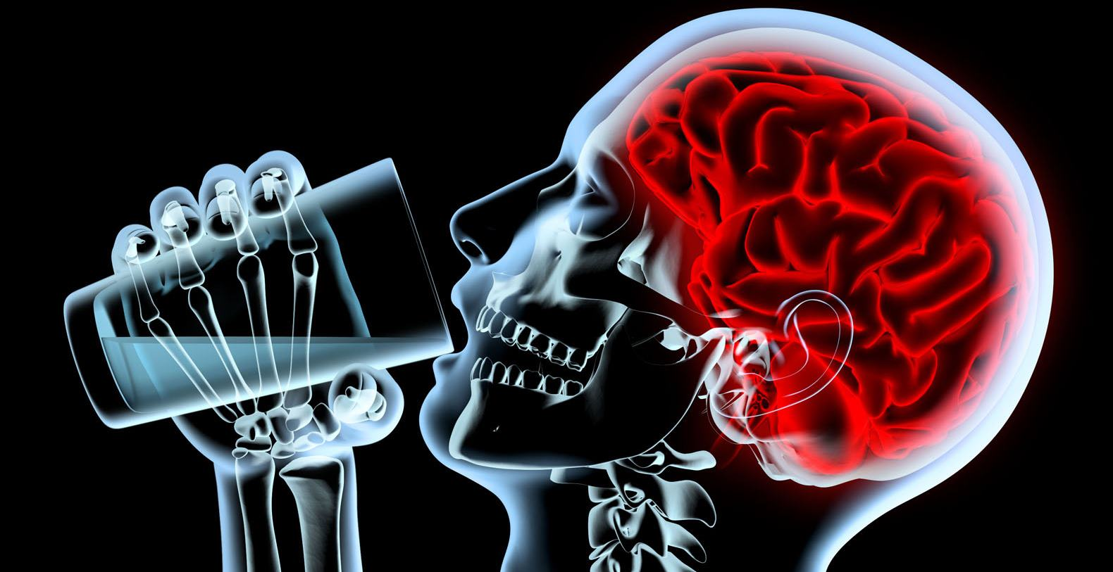 Воздействие алкоголя на человеческий мозг