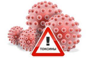 Выведение токсинов