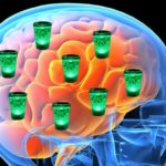 Влияние токсических веществ на мозговые клетки