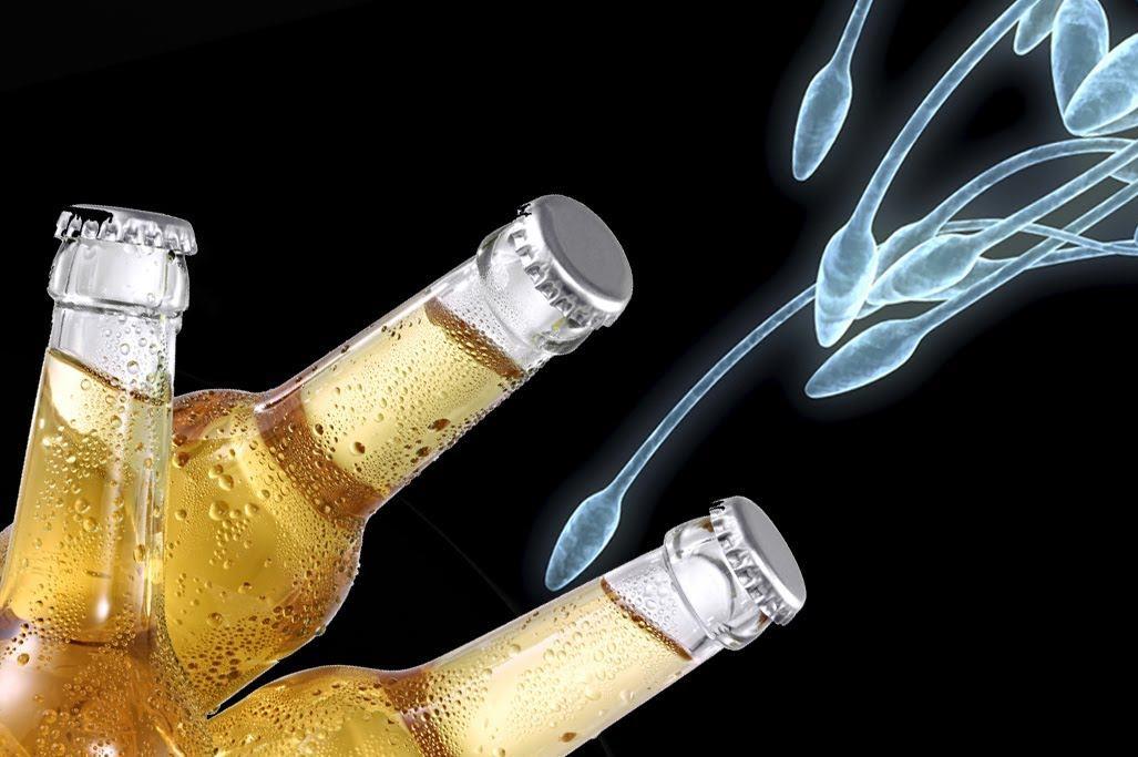Обновляется сперма от алкоголя